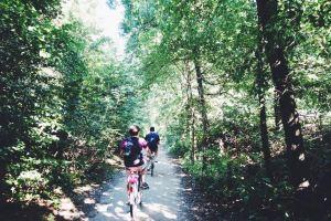 forestbiking